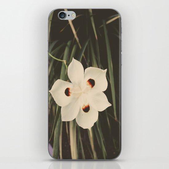 Little White iPhone & iPod Skin