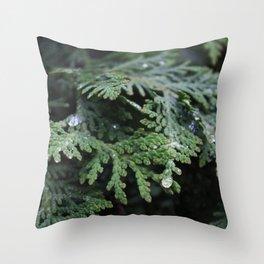 Evergreen 2 Throw Pillow