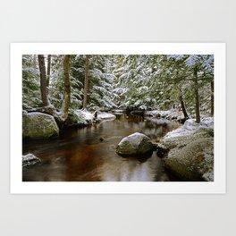 Winnebago Brook, Winter #1 - Meacham Lake Art Print
