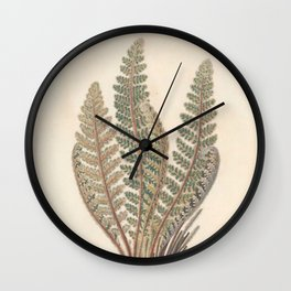 Botanical Ferns Wall Clock