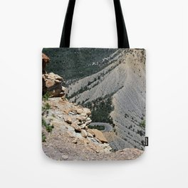 View from top of Mesa Verde Tote Bag