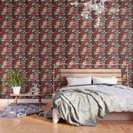 cat-247 Wallpaper