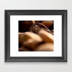 pebbles we carry Framed Art Print