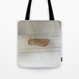 beauty in the mundane - moth Tote Bag