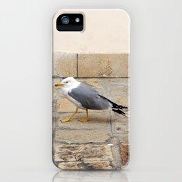 Grumpy Seagull iPhone Case