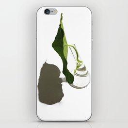 Satellite iPhone Skin