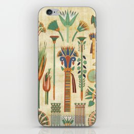 Egyptian paper papyrus hieroglyphs iPhone Skin