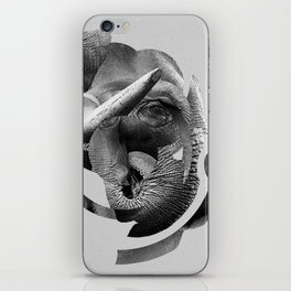 / skin / elephant iPhone Skin