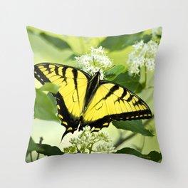 Butterfly III Throw Pillow
