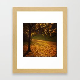 Raining Gold Framed Art Print