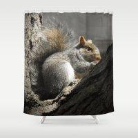 squirrel Shower Curtains featuring Squirrel by Mandy Becker