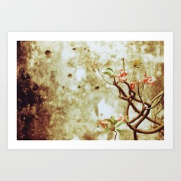 Living Canvas Art Print