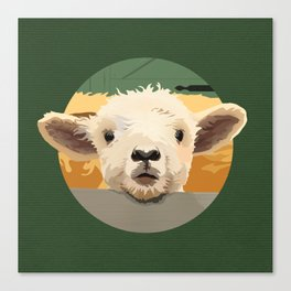 Sweet Lamb in the Barnyard Canvas Print