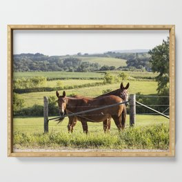Mules gaze from opposite directions in rural Clayton County Iowa Serving Tray