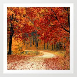 Autumn Photography - Forest Of Orange Leaves Art Print