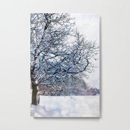 bokeh snow Metal Print