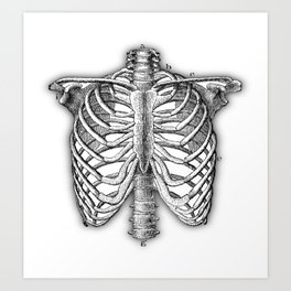 Vintage Skeleton Art Print