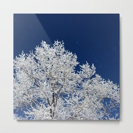 Icy Brilliance Metal Print