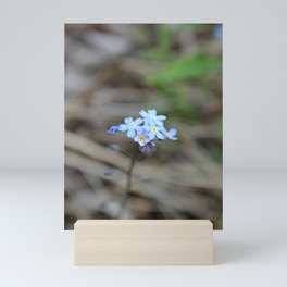 Forget-Me-Nots Mini Art Print