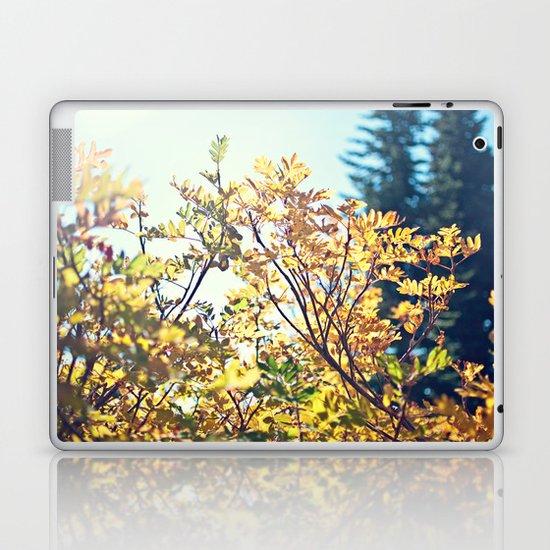 Fall Sun Laptop & iPad Skin