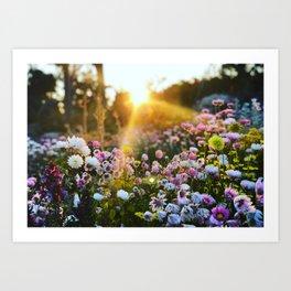 Magical Wildflowers Art Print