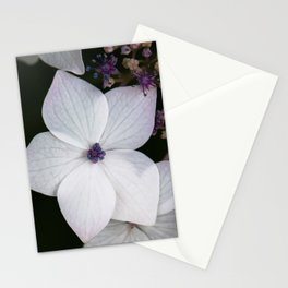 Purple and Blue Hydrangea Stationery Cards