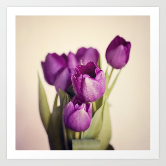 Dark Purple Tulips Art Print