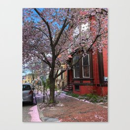 Spring in the West End (1) Canvas Print