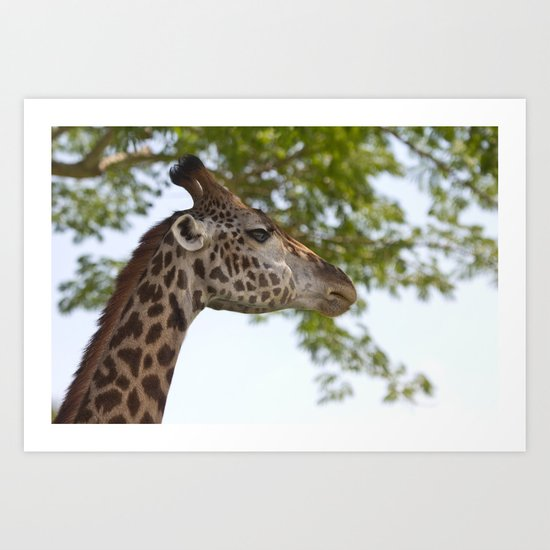 Why wasn't the Giraffe invited to the party? Art Print