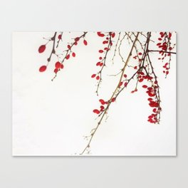 Red Berry Branches Canvas Print