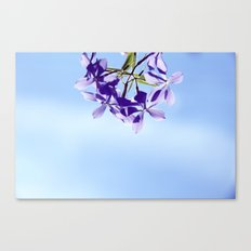 lost in blue Canvas Print