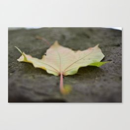 Time Well Spent Canvas Print