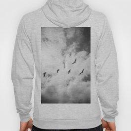 """Bird Silhouettes"" Holga double exposure Hoody"