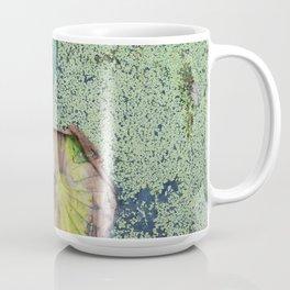 Duckweed & Lilypad Coffee Mug