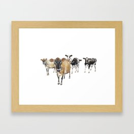 Cow Crowd Framed Art Print