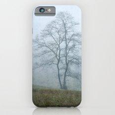 Tree in the Mist iPhone 6s Slim Case