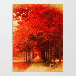 Tree Alley Autumn painted Poster