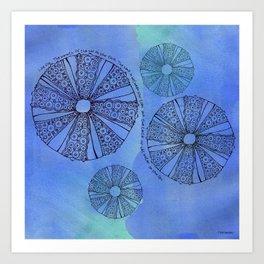 Blue Sea Urchin Art Print