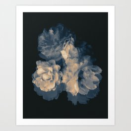 Bleeding Roses. Art Print