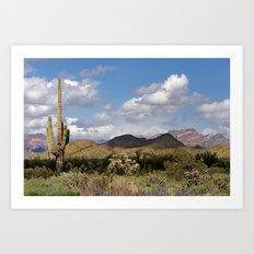 Arizona Spring Desert Art Print