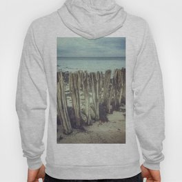 Walrus teeth still standing Hoody