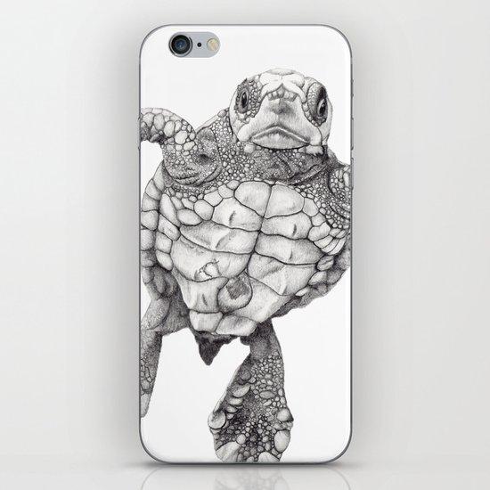 Chelonioidea (the turtle) iPhone & iPod Skin