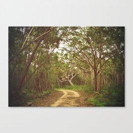 Mystery Trail Canvas Print