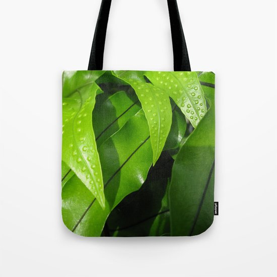 From the Conservatory #42 Tote Bag