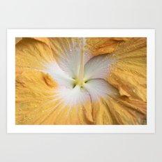 Full Bloom Yeller Art Print