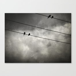 The Trace 11.25 Canvas Print