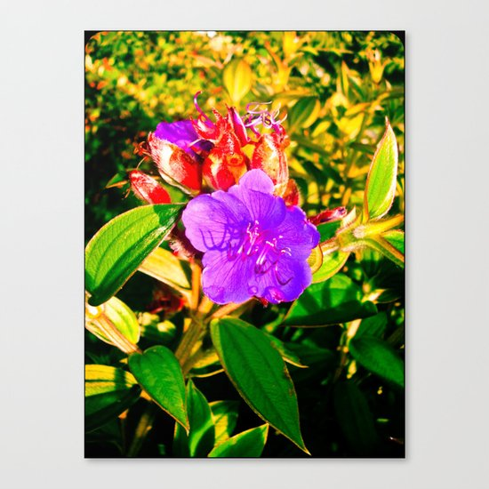 MY LIFE Canvas Print