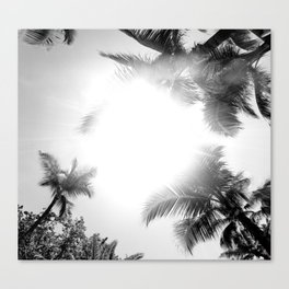 Palm Sunshine Canvas Print