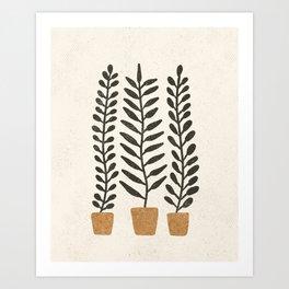 Potted Ferns - Terracotta, Black Art Print
