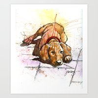 It's a Dog's Life Art Print